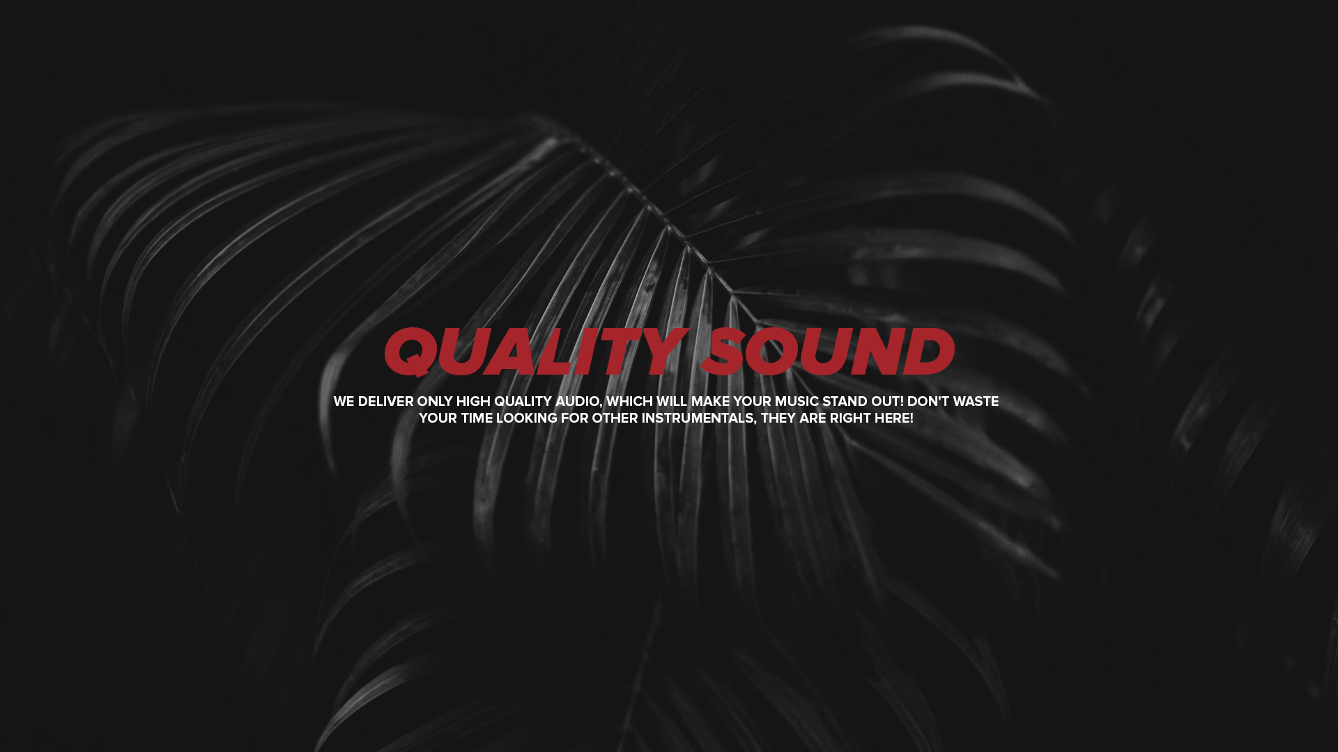 Black Lions Beatz | Online Beat Store | Home